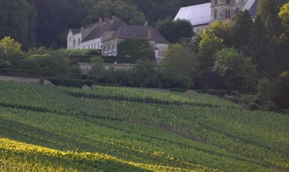 A Vintage Champagne Story by Dom Pérignon