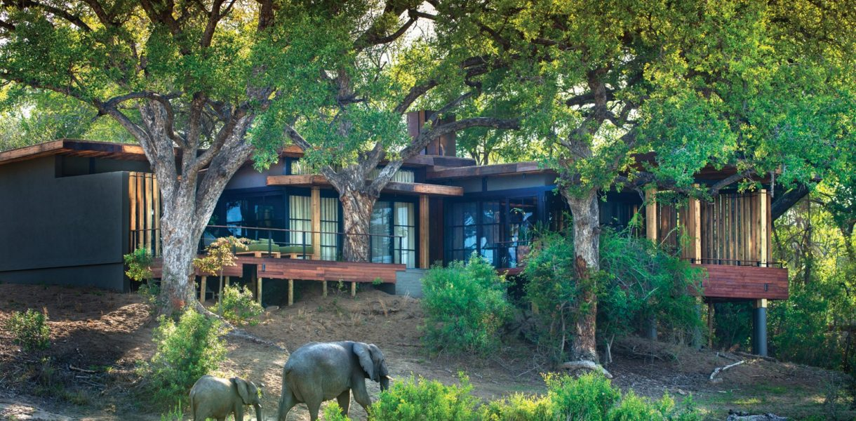 3 boutique safaris to soak up nature's stillness