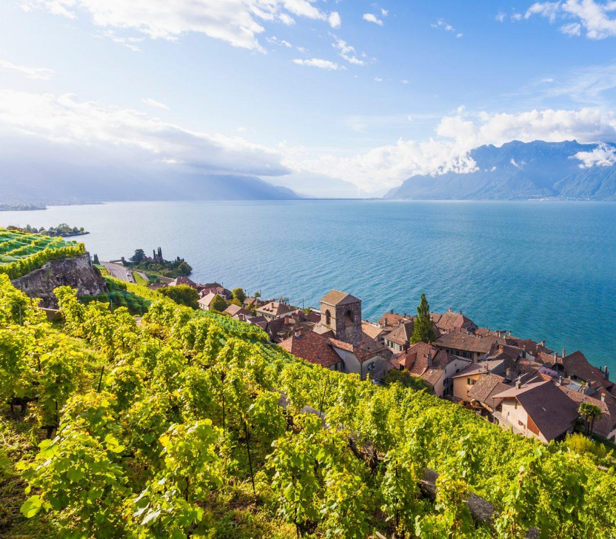 Lavaux vineyards, Lake Geneva