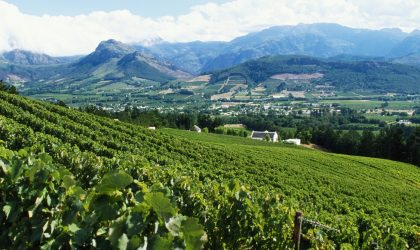 Is South Africa currently making the greatest wine in its history?