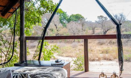 A sustainable Kruger National Park safari