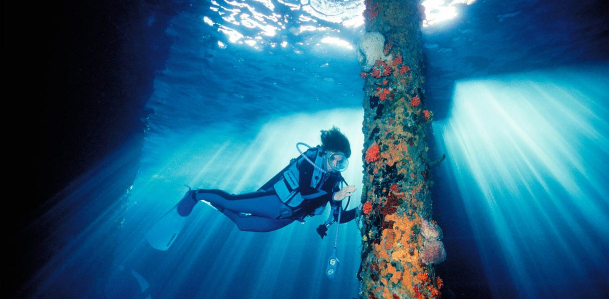 How Dr Sylvia Earle is igniting support to safeguard the blue heart of the planet